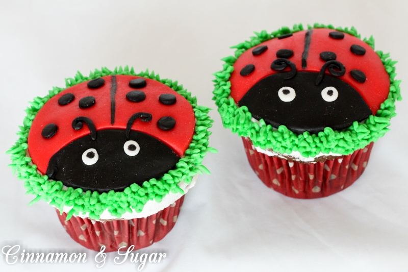 Little Miss Ladybug-10