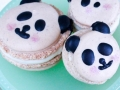 Panda Macarons-16