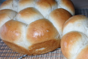 Sourdough rolls