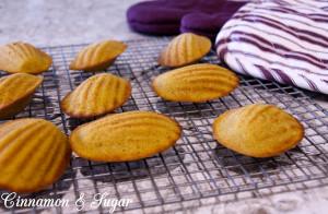Pumpkin Spiced Madeleines-3686