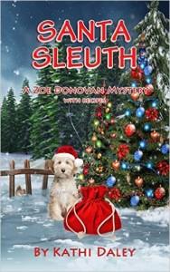 Santa Sleuth