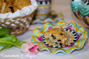 Cranberry Pecan Yogurt Scones are tender pastries with healthy yogurt replacing some of the butter making these a bit lighter than traditional scones.