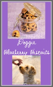 Whole grain Doggie Blueberry Biscuits are lightly sweetened with vanilla Greek yogurt & blueberries. A healthy way to spoil your favorite furry friend!