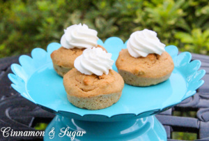 Caro's Apple Pupcakes are easy to whip up yet wholesome and delicious for your furry four-legged friend! Top with a dollop of yogurt for a special treat!