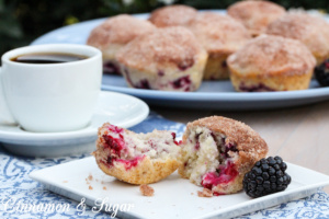 Not only are these blackberry muffins super quick and easy to mix up, they are utterly delicious from the crunchy, cinnamon-y topping to the jammy pieces of tart blackberries baked into the sweet, light-crumbed bread.