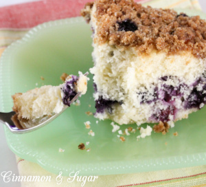 Lara's Blueberry Buckle pairs sweet, ripe blueberries with tender, moist cake. A struesel topping adds delightful texture and taste to this summery dessert!