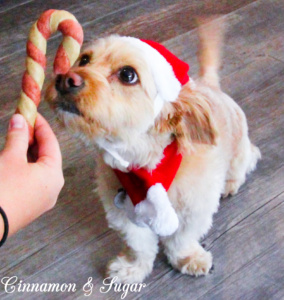 Pupper-Mint Candy Cane Twists are a whimsical treat to spoil your dog for the holidays while the mint will freshen your pup's breath for social gatherings!